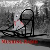 Mushing Radio: Tribute to Allie Marie