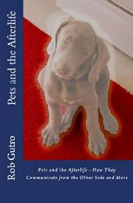 pets and the afterlife cover