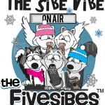 The Sibe Vibe presents Robert Baker