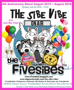 sibe vibe august