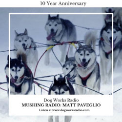 Iditarod podcast on Dog Works Radio