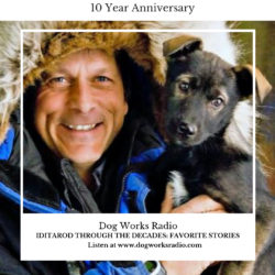 Iditarod Through the Decades: Favorite Stories