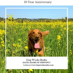 SniffSpot on Dog Works Radio