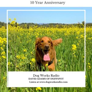 SniffSpot on Dog Works Radio