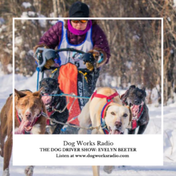 Evelyn Beeter Dog Works Radio