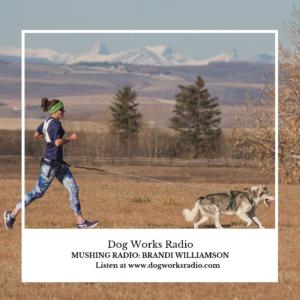 Brandi Williamson Dog Works Radio