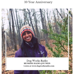 Joy Weis Dog Works Radio