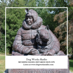Iditarod Sign Ups Dog Works Radio