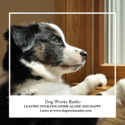 Leave Your Dog Home Alone and Happy Dog Works Radio