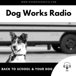 Back to School and Your Dog Dog Works Radio