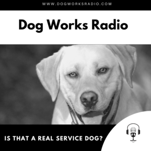 Is that a real service dog? Dog Works Radio