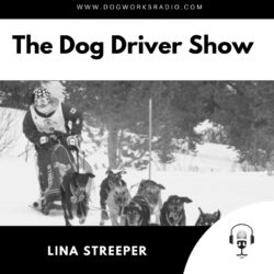 Lina Streeper Dog Works Radio