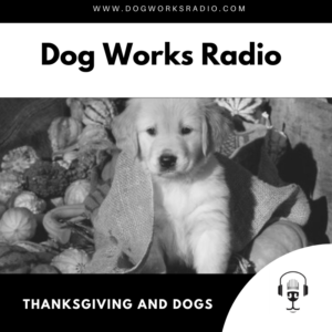 Thanksgiving and Dogs Dog Works Radio
