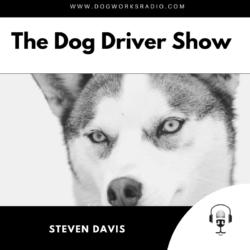 Steven Davis Dog Works Radio
