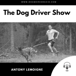 Antony LeMoigne Dog Works Radio