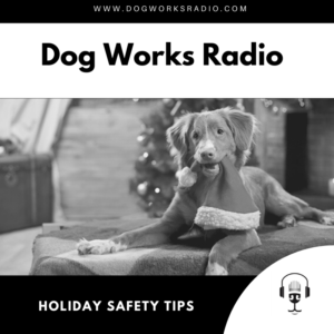 Holiday Safety Tips for your dog on Dog Works Radio