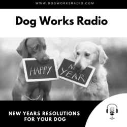 New Years Resolutions for Your Dog Dog Works Radio
