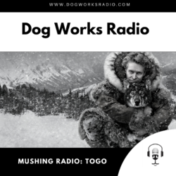 Togo Dog Works Radio