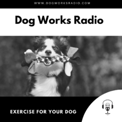 Dog Works Radio Exercise for your dog