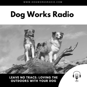 Dog Works Radio Leave No Trace Loving the Outdoors with your dog