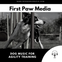 DOG MUSIC FOR AGILITY TRAINING