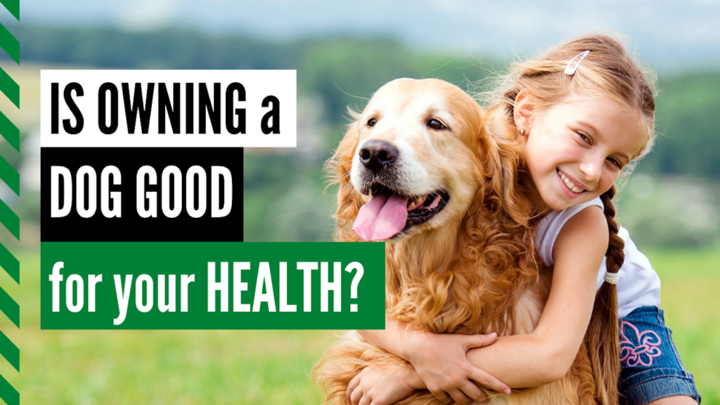 Is owning a dog dog good for your health dog works radio podcast
