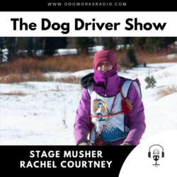 Rachel Courtney Dog Driver Podcast