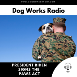 president Biden signs paws act dog works radio